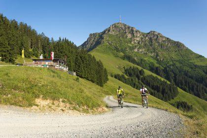 MTB Kitzbühler Alpen
