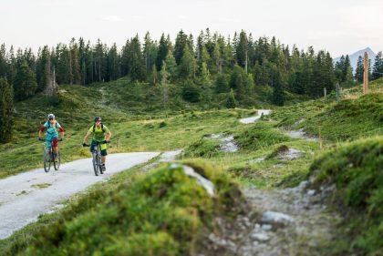 kat-bike-kitzbueheler-alpen