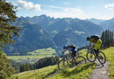 Sechs sommerliche Top-Touren im Bregenzerwald für Mountainbiker