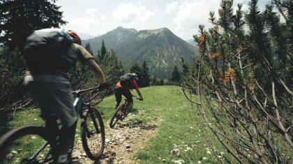 MTB-Action auf dem Trail