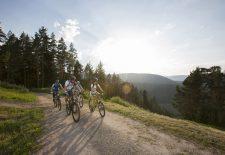 Veranstaltungs-Highlights in Baiersbronn