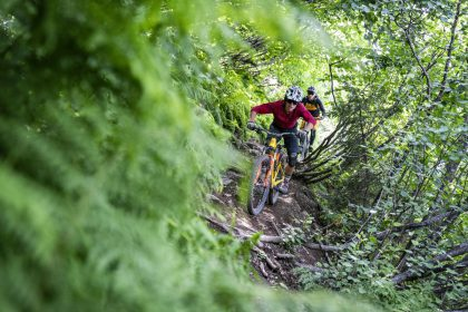 Saalbach Bike 2019 © saalbach.com, Stefan Voitl