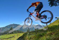Bikepark Hornbahn Hindelang startet in die Sommersaison