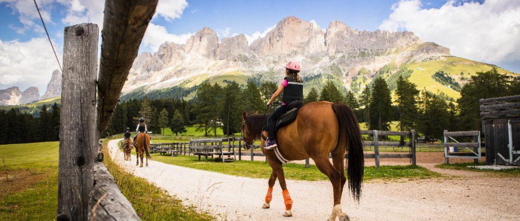 Familienprogramm im Eggental - Pferde © Storyteller Labs
